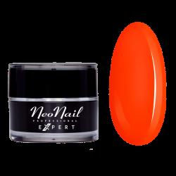 Paint Gel Expert Neon Orange