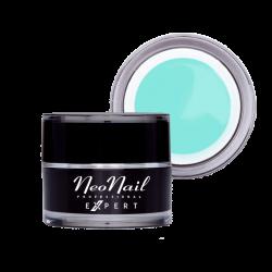 Art Gel NN Expert Pastel Mint